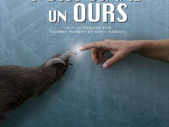 Documentaire Fort comme un Ours