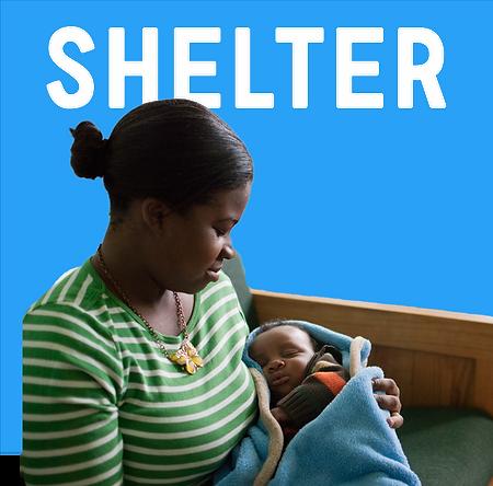 Shelter.chips.png