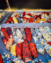anishinaabe corn.jpeg