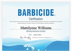 Barbicide certificate for makeup artist