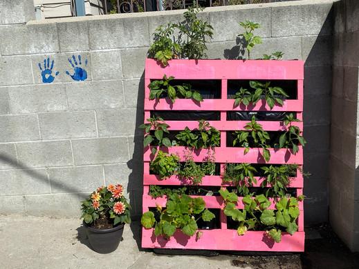 How-to: DIY Pallet Garden