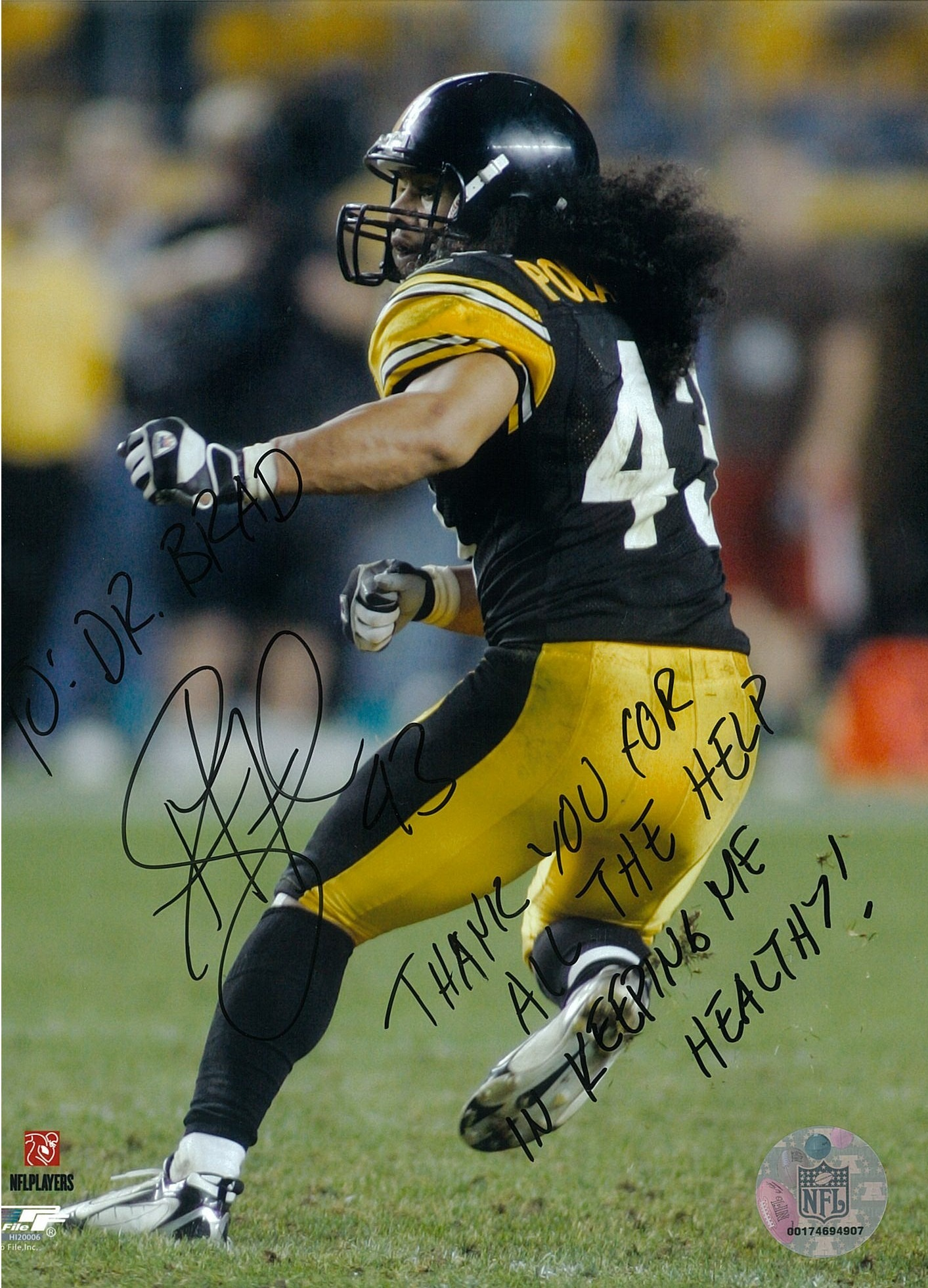 Troy Polamalu #43 of the Pittsburgh Steelers
