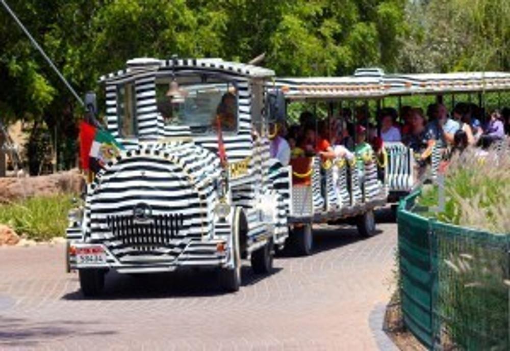 Zebra Train at Al Ain Zoo