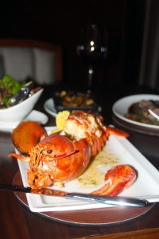 Say hello to my little friend, Caramel, Abu Dhabi, Saadiyat, Boston lobster in Abu Dhabi