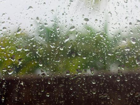 Daily Photo–Rainy Day, Dream Away