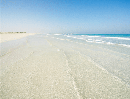 New Things to Do in Abu Dhabi