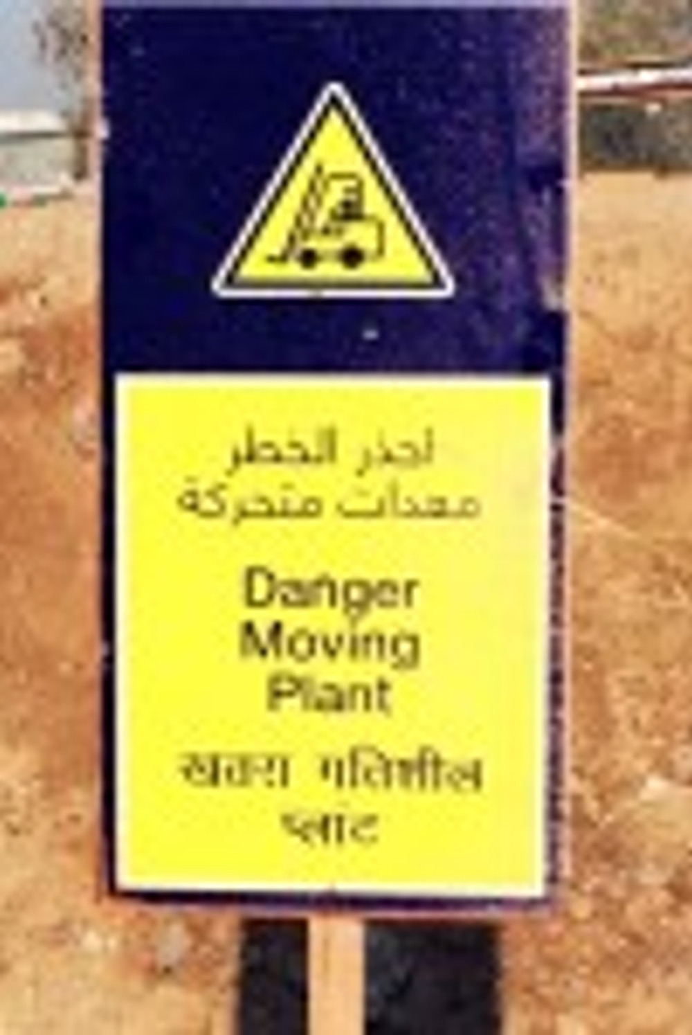 Watch out! A plant is moving nearby!