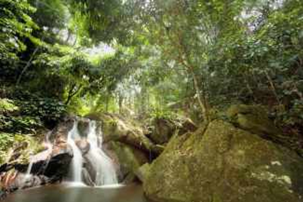 Picturesque waterfalls can be found in the mountains all over Tioman Island