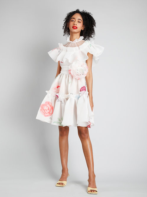 Sheer neck short dress with frill detailing