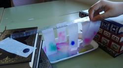 Cromatografies  (10)