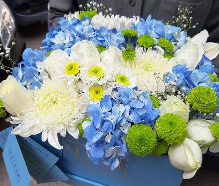 Cool blue Hydrangea box