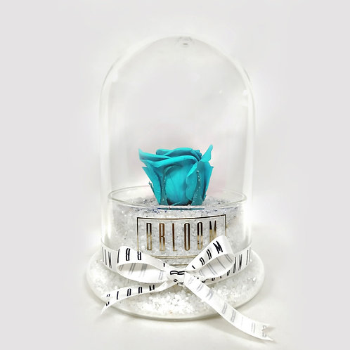 Solitaire Turquoise Rose in Glass Dome