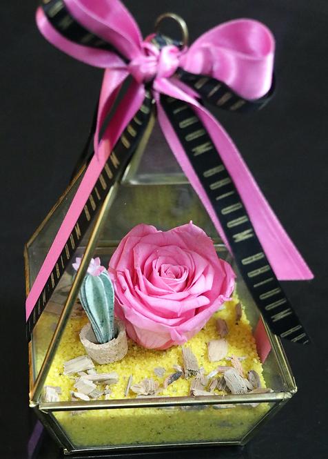 Solitaire Vase in Pink