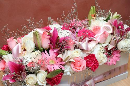 Violin Lily - Pretty in Pinks