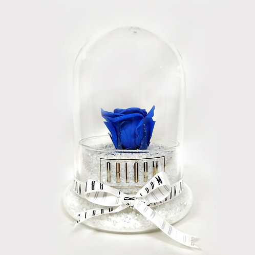 Solitaire Blue Rose in Glass Dome