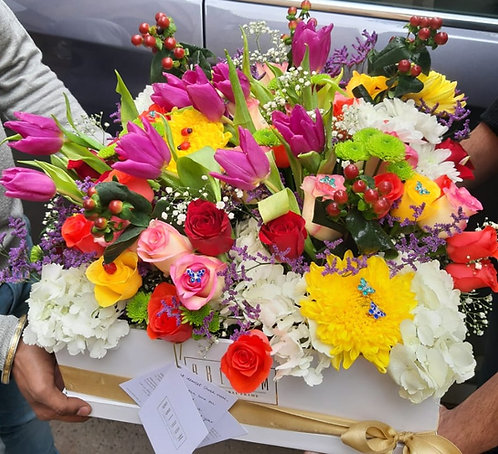 Large Rainbow Tulip Box