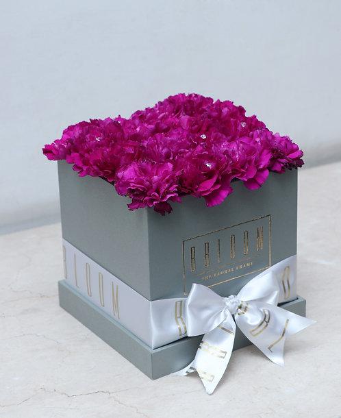 Carnation Cube