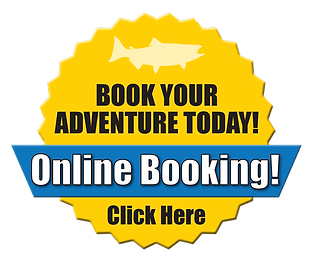Online-booking-button-2021.png