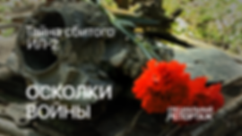 ОСКОЛКИ ВОЙНЫ ИЛИ ТАЙНА СБИТОГО ИЛ-2