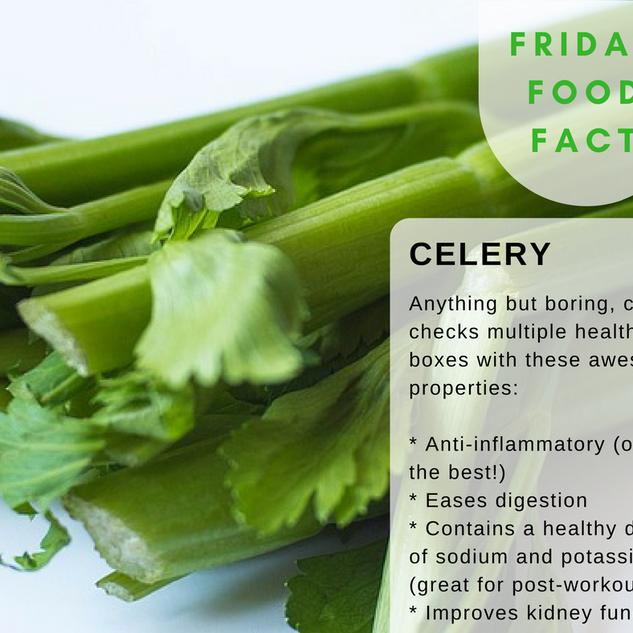 Celery-Food-Fact.png