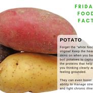 potato-food-fact.png