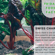 Swiss-Chard-food-fact.png