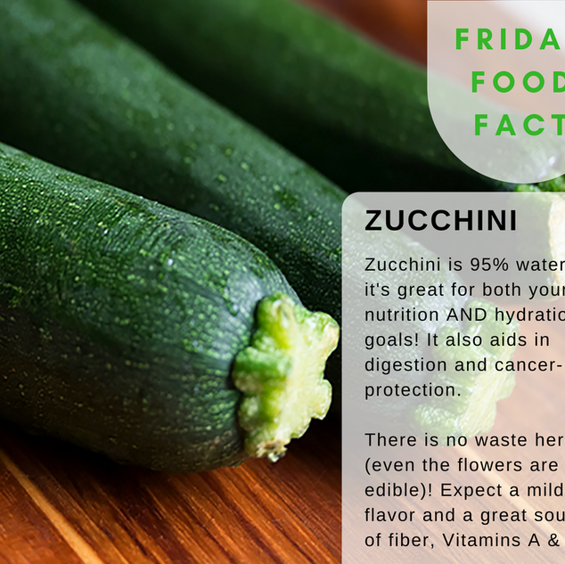 Zucchini-Food-Fact.png