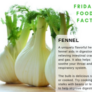 Fennel-Food-Fact.png