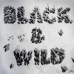 BLACK & WILD, 100 x 100 cm