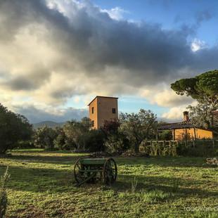 Toscana - Castagnetto Carducci