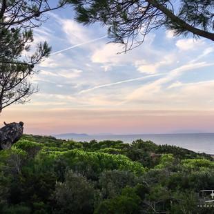 Toscana - Marina di Castagneto