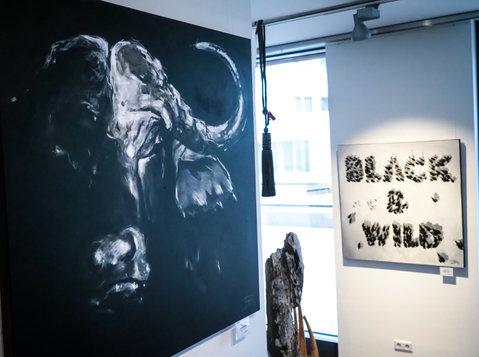 Austellung BLACK & WILD 2018