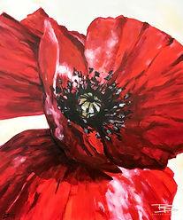 356. Mohnblüte, 100 x 120 cm (Vander-Mat