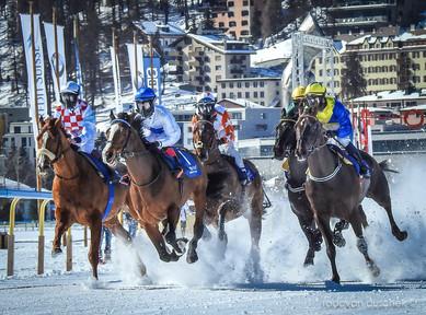 WHITE TURF 2017 - St. Moritz (CH)