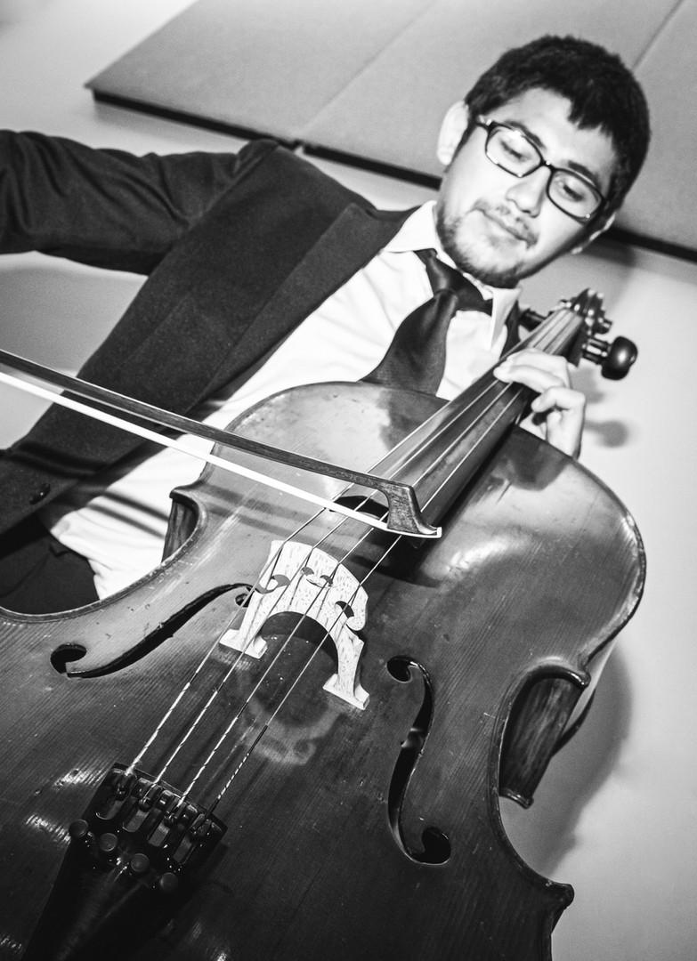 Diego Alvarez / Violin Tutti