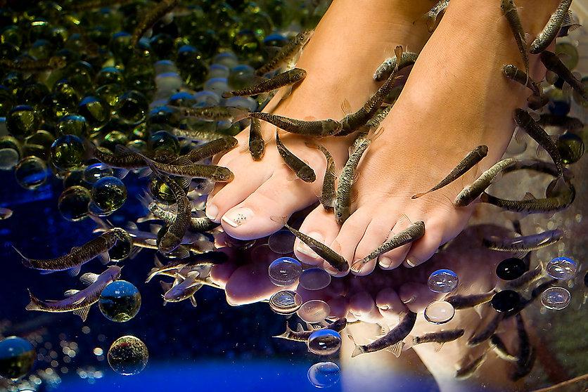 Madhair Fish spa