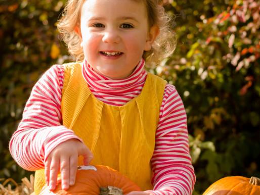 Pumpkin Mini Sessions