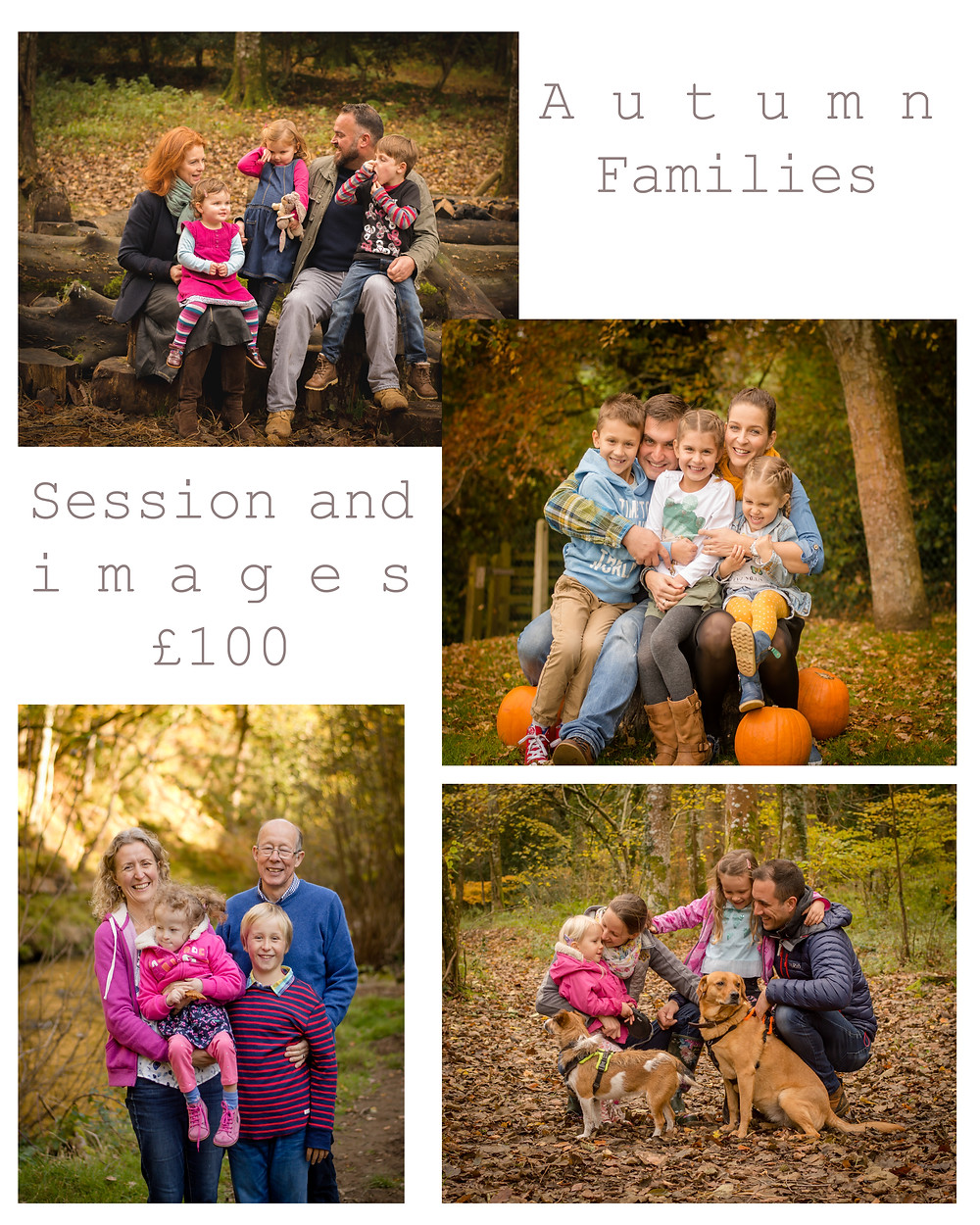 Family Photographer Exeter - Dawn Studholme Photography