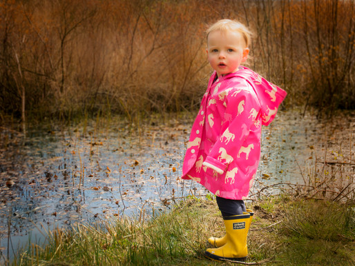 Photographing Toddlers and  Tips for a successful Toddler Photo Session