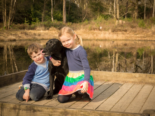 Mollie and Charlie's Spring Session