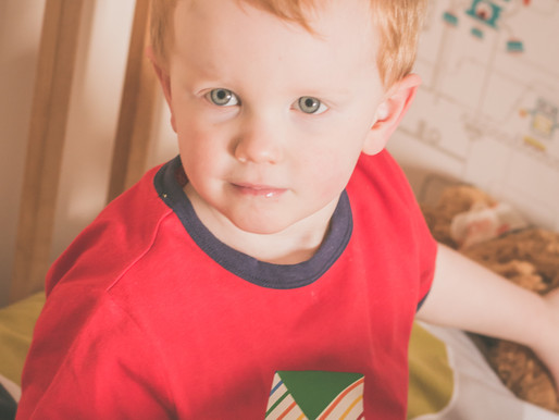 Capturing the Not-So-Terrible Twos! (Toddler Lifestyle Photography!)