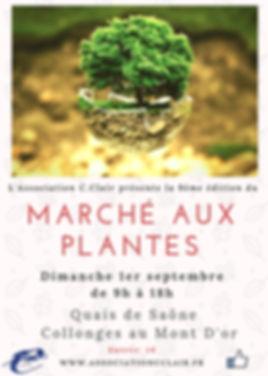 Marché_aux_plantes_rares.jpg