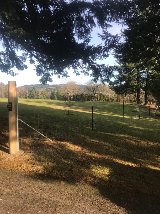 4ft redbrandfence,woven wire dog fence