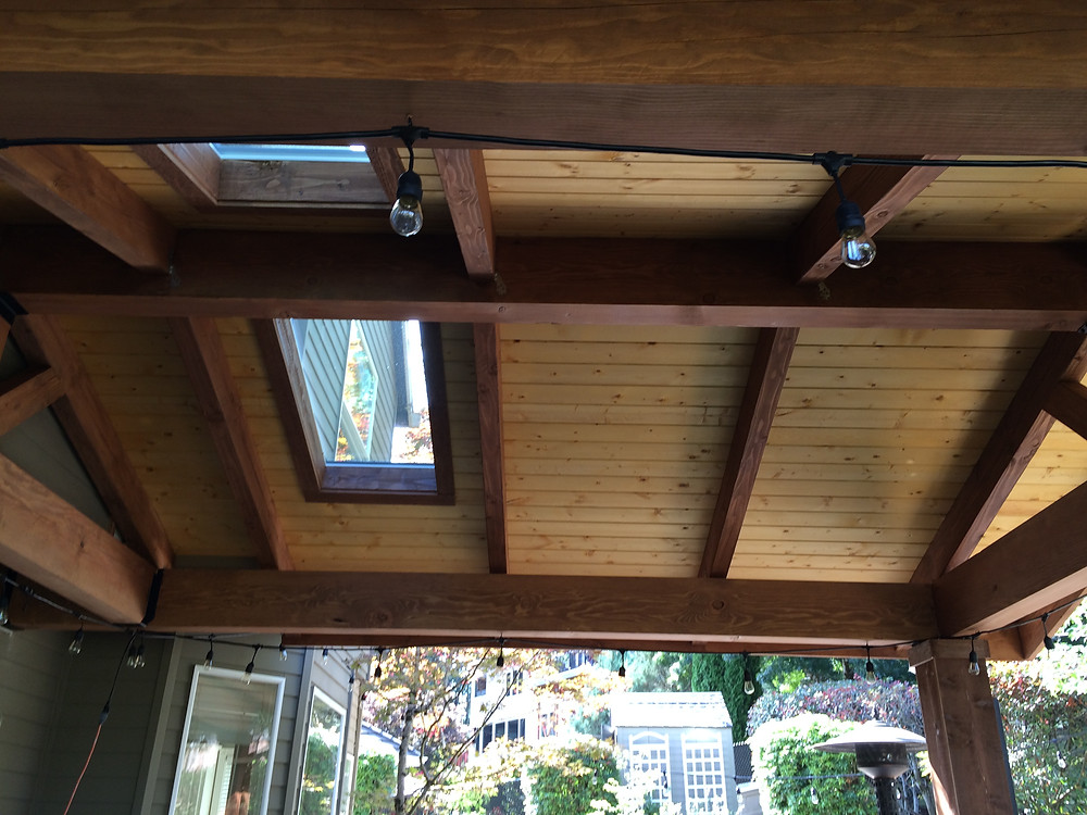 two skylights installed in patio cover
