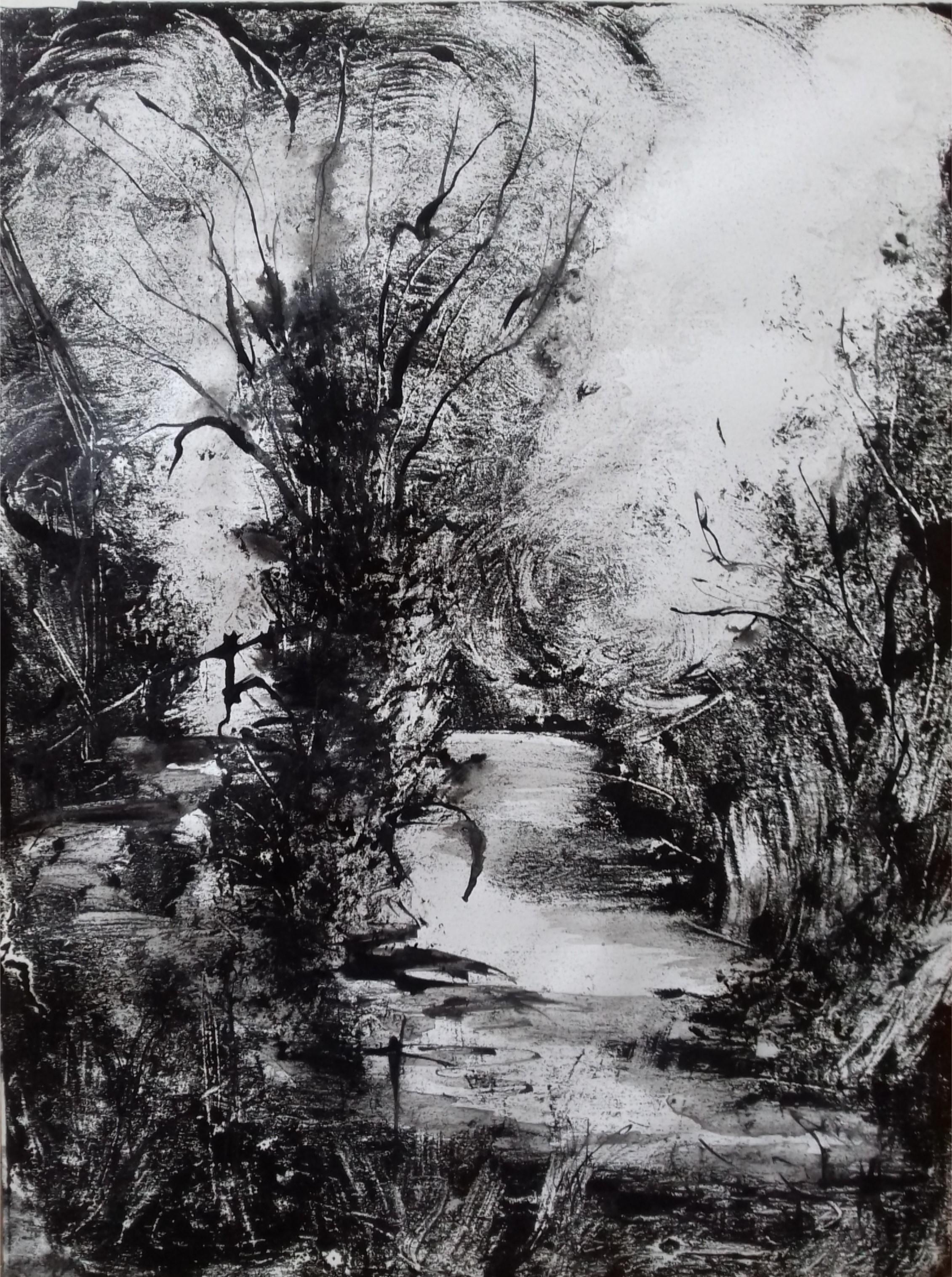 Mare, Monotype encre, 30x40 cm, 2018