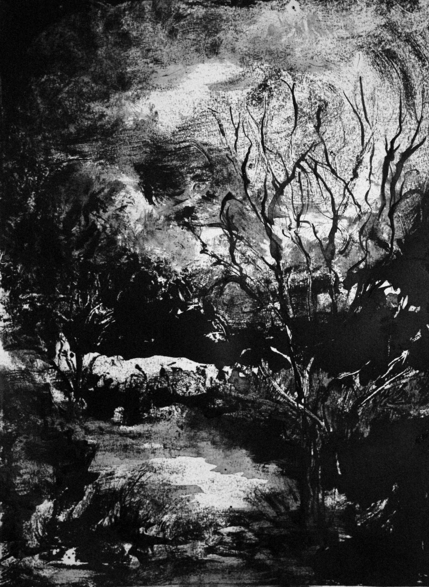 Lune, Monotype encre, 30x40 cm, 2018