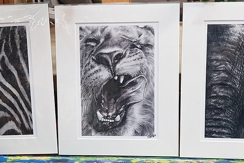 Wild Series Mounted Prints