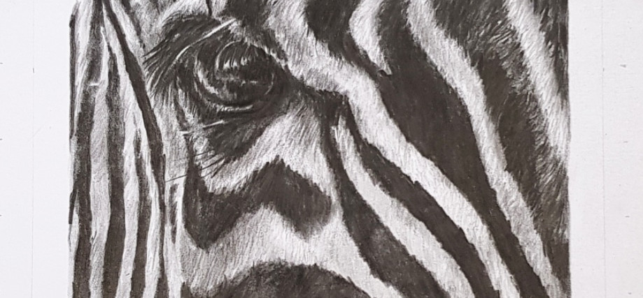 Wild series Stripes by Rachel Baker Artist