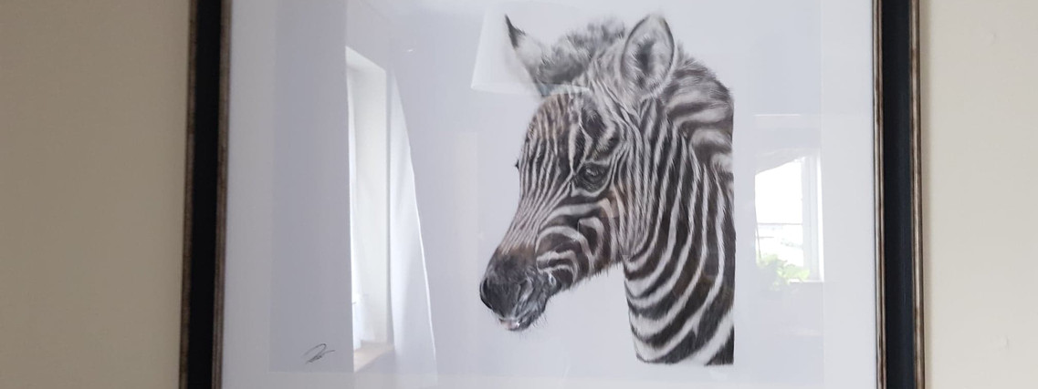 Baby Stripes By Rachel Baker Artist