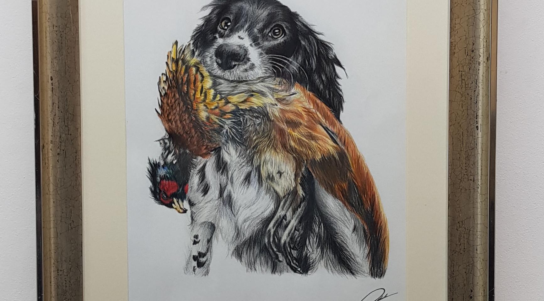 Springer with Phesant by Rachel Baker Artist